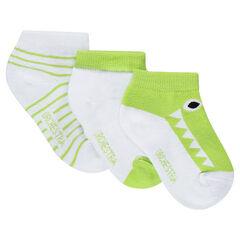 Pack de 3 pares de calcetines cortos con cocodrilo de jacquard y rayas